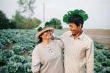 """Bộ ảnh """"ba mẹ trong vườn bắp cải"""" của cặp vợ chồng nông dân Sóc Trăng thu hút cộng đồng mạng"""