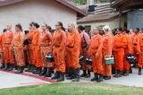 Cháy rừng ở California: Nữ tù nhân tham gia lực lượng cứu hỏa