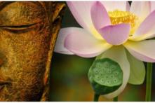 Ý nghĩa thực sự của việc con người bái Phật là gì?