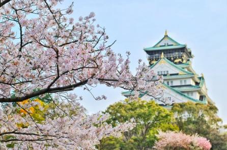 Khí chất nhu hòa của người phụ nữ Nhật truyền thống