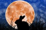 Mặt Trăng: 7 bí ẩn và 1 giả thuyết khó tin