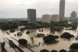 Houston bao Harvey