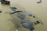 Hơn 1.000 tấn xít than bị chìm trên sông Chanh