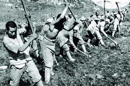 Đảng Cộng sản Trung Quốc từng trồng thuốc phiện lấy tiền phục vụ chiến tranh