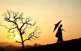 Học được quên đi, đối xử thiện với hết thảy các sinh mệnh, buông bỏ tâm oán hận