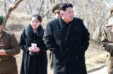Truyền thông Hàn Quốc: Kim Jong-un phái em gái đang mang thai đến Hàn Quốc vì tình hình cấp bách