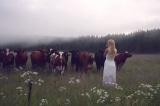 dùng tiếng hát gọi bò