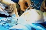 Vì sao lãnh đạo ĐCSTQ cực kỳ coi trọng chuyên gia cấy ghép tạng?