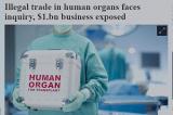 Úc xem xét ban hành điều luật cấm người dân ghép tạng bất hợp pháp