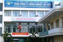 Sai phạm hơn 2.000ha đất công tại Tổng Công ty Nông nghiệp Sài Gòn