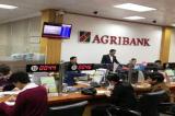 Nhiều tài khoản Agribank bị rút trộm hàng chục triệu đồng
