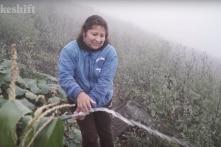 Nông dân ở vùng núi Peru thu lấy nước từ… sương mù (video)