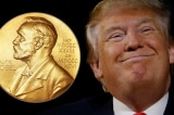 Trump-Nobel