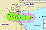 Chiều tối nay, bão số 3 đi vào khu vực ven biển các tỉnh Thái Bình – Hà Tĩnh