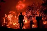 Cháy rừng thảm khốc tại California, ít nhất 42 người chết