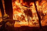 Cháy rừng California: 71 người chết, hơn 1000 người mất tích