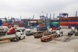 TP.HCM: Phát hiện 2 tài xế dương tính với ma túy tại cảng Cát Lái