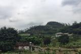 Vụ đất rừng Sóc Sơn: Kỷ luật cán bộ, cưỡng chế ngay công trình vi phạm