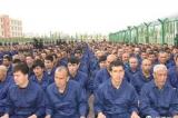 Nghị sĩ Mỹ thúc giục chế tài Trung Quốc đàn áp thiểu số Hồi giáo