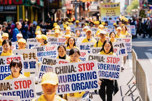 diễu hành phản mổ cướp nội tạng học viên Pháp Luân công