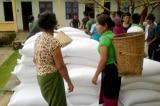 Chính phủ hỗ trợ gần 4.900 tấn gạo cho 6 tỉnh