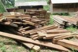 Quảng Bình: Tịch thu 4,6m3 gỗ lậu trong trụ sở xã