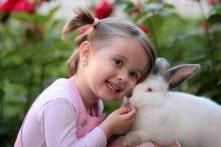 7 lý do bạn nên cân nhắc trước khi nhận nuôi một chú thỏ