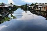 Hậu Giang có thông cáo báo chí vụ ô nhiễm sông Cái Lớn