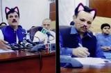 """Pakistan: Chính trị gia vô tình bật hiệu ứng """"mặt mèo"""" khi đang livestream"""