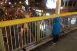 Hồng Kông: Cậu bé đứng trên cầu bắt nhịp hô khẩu hiệu cho người biểu tình (video)