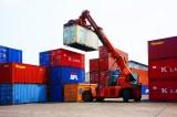Sản lượng xuất khẩu tăng đột biến, cảnh báo nguy cơ gian lận xuất xứ