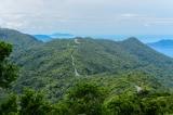 Đà Nẵng cấm xe tay ga lưu thông trên bán đảo Sơn Trà