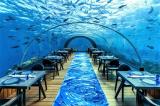 10 nhà hàng đắt đỏ nhất thế giới