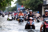 ĐBSCL đang 'chìm', TP.HCM có nơi sụt lún 81cm trong 10 năm qua