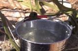 Bình Phước: Nghi vấn bỏ thuốc trừ sâu vào nước giếng vì mâu thuẫn