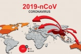 Chuyên gia: 70% dân số thế giới có thể bị nhiễm COVID-19 trong một năm