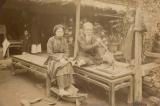 Lược khảo về dịch bệnh ở Việt Nam hồi thế kỷ 19