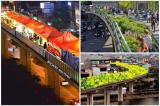 Đường sắt Cát Linh – Hà Đông: Cử tri đề nghị truy trách nhiệm cá nhân