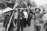 Chuyện phát triển nông nghiệp sau 75 – Trích hồi ký Nguyễn Hiến Lê