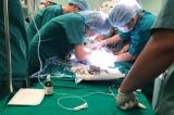 Phẫu thuật thành công tách rời cặp song sinh Trúc Nhi – Diệu Nhi